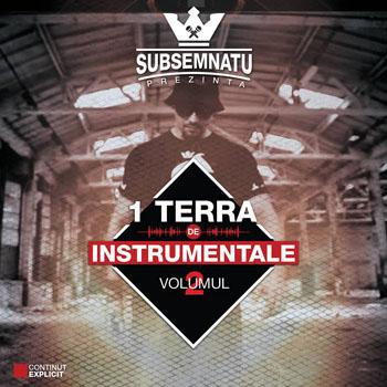 Subsemnatu - 1 Terra de Instrumentale Vol 2